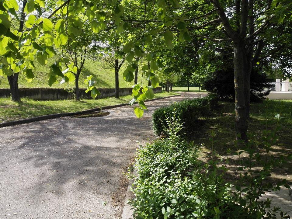 Madárdalos tavaszi séta lesz szombaton a Szabadidőközpontban