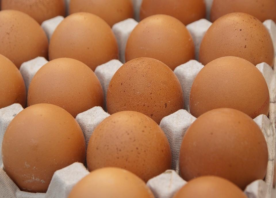 Három napos tojáskavalkád vár a kecskemétiekre