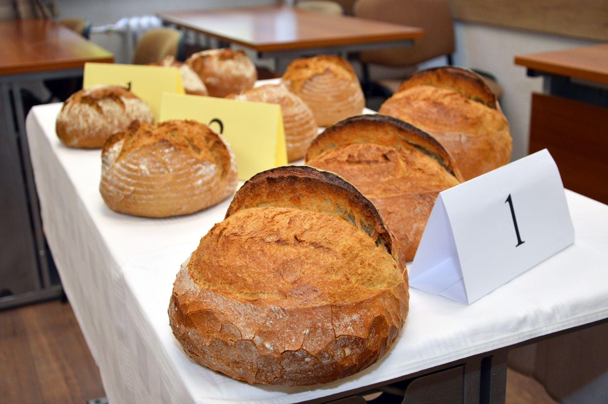 Idén is kisül Kecskemét kenyere