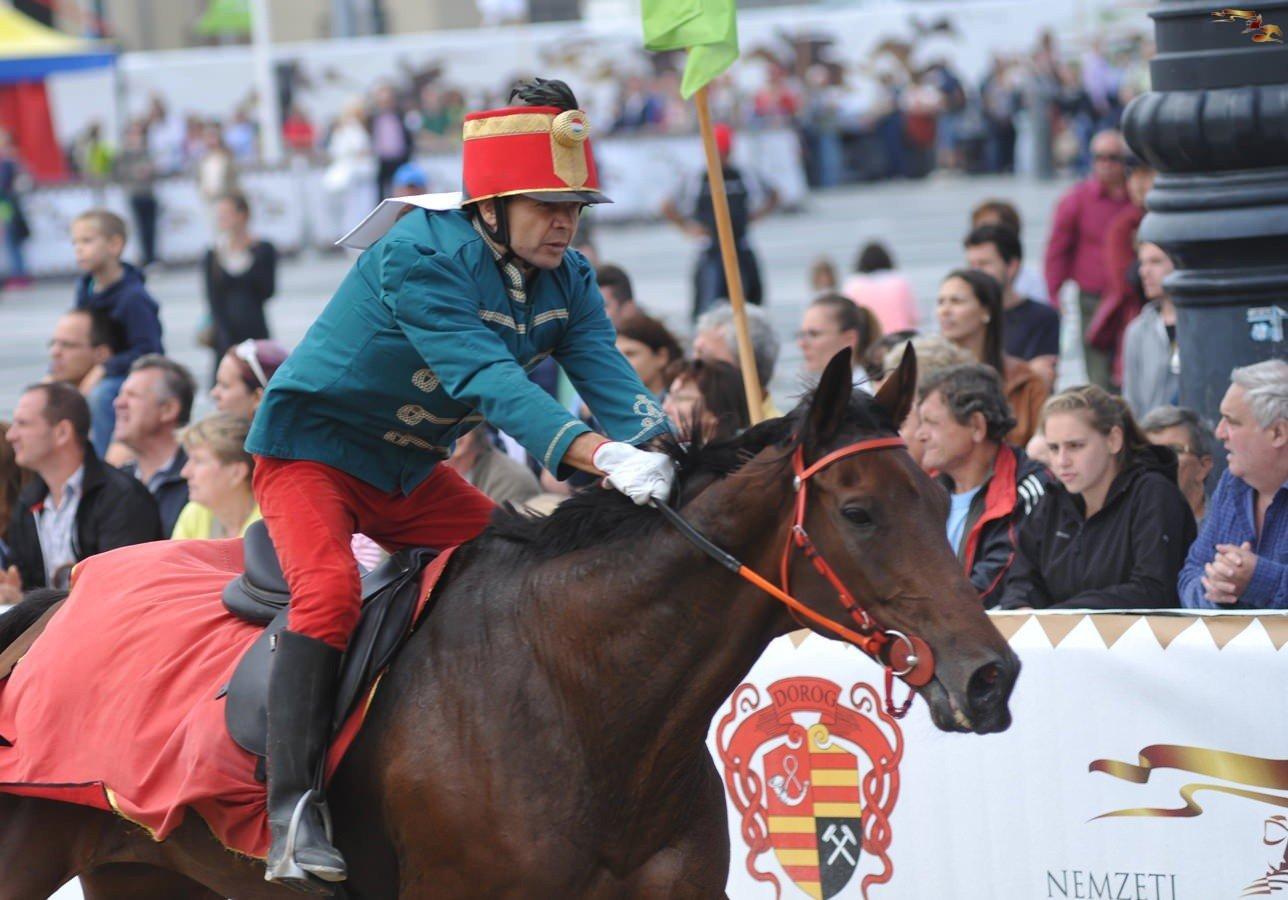 Baja lovasa nyerte a Kaposvári Vágtát