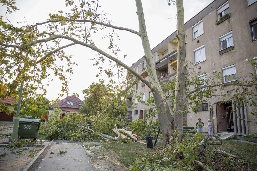 Bács-Kiskunban is jelentős károkat okoztak a nyári viharok