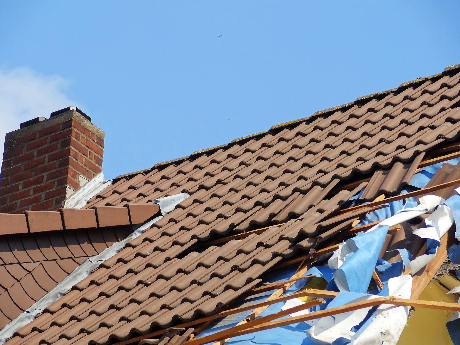 Mabisz: több mint 300 millió forint kárt okozott a vasárnapi vihar