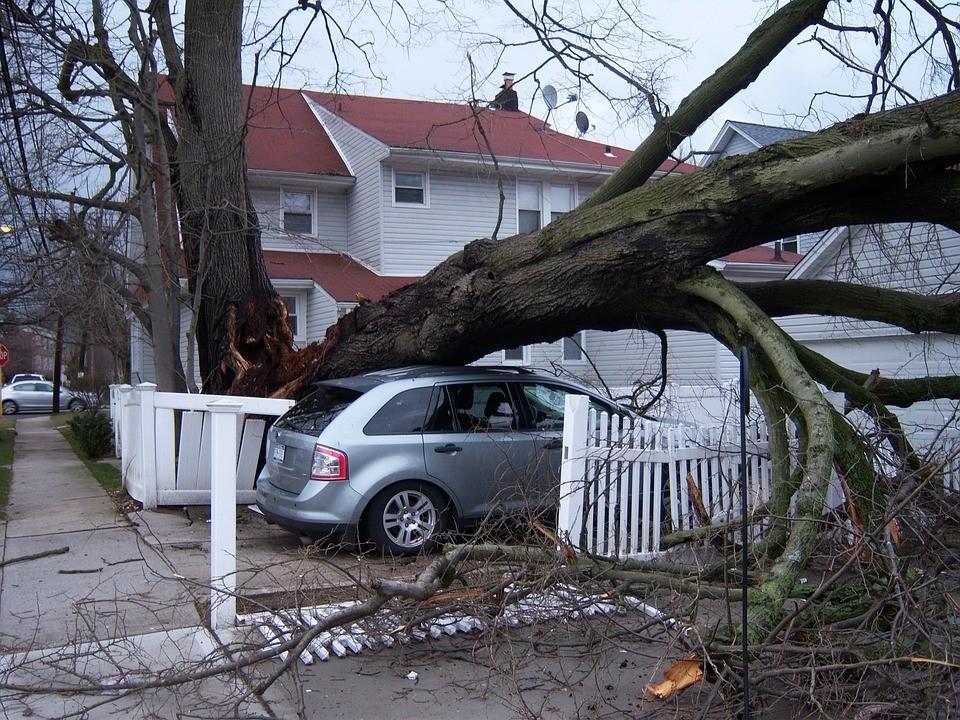 Vihar - még kedden is dolgoztak a károk felszámolásán