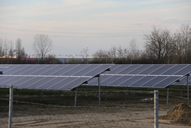 Előre tör a zöld energia Baján is