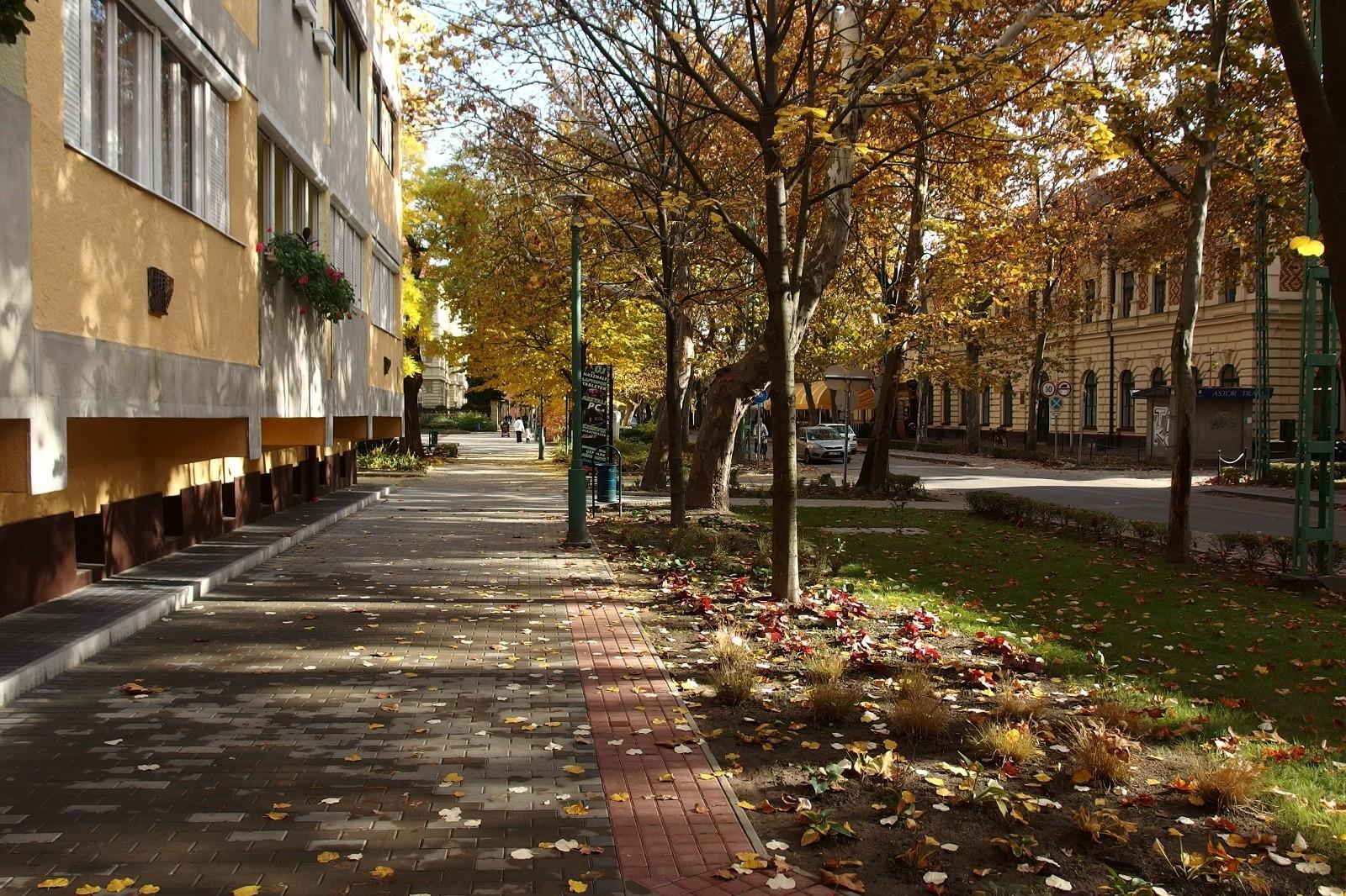 Májustól ingyen lehet internetezni Kiskunfélegyházán a Kossuth utca 700 méteres szakaszán