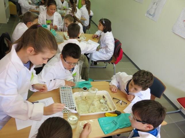 Több száz kisiskolás kap különleges képzést