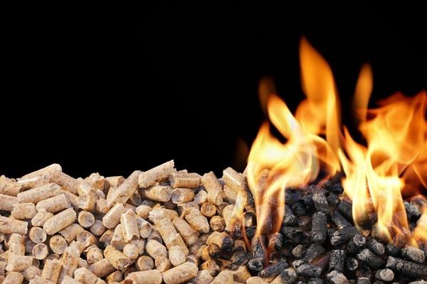 Biomassza erőmű projekt Kiskőrösön