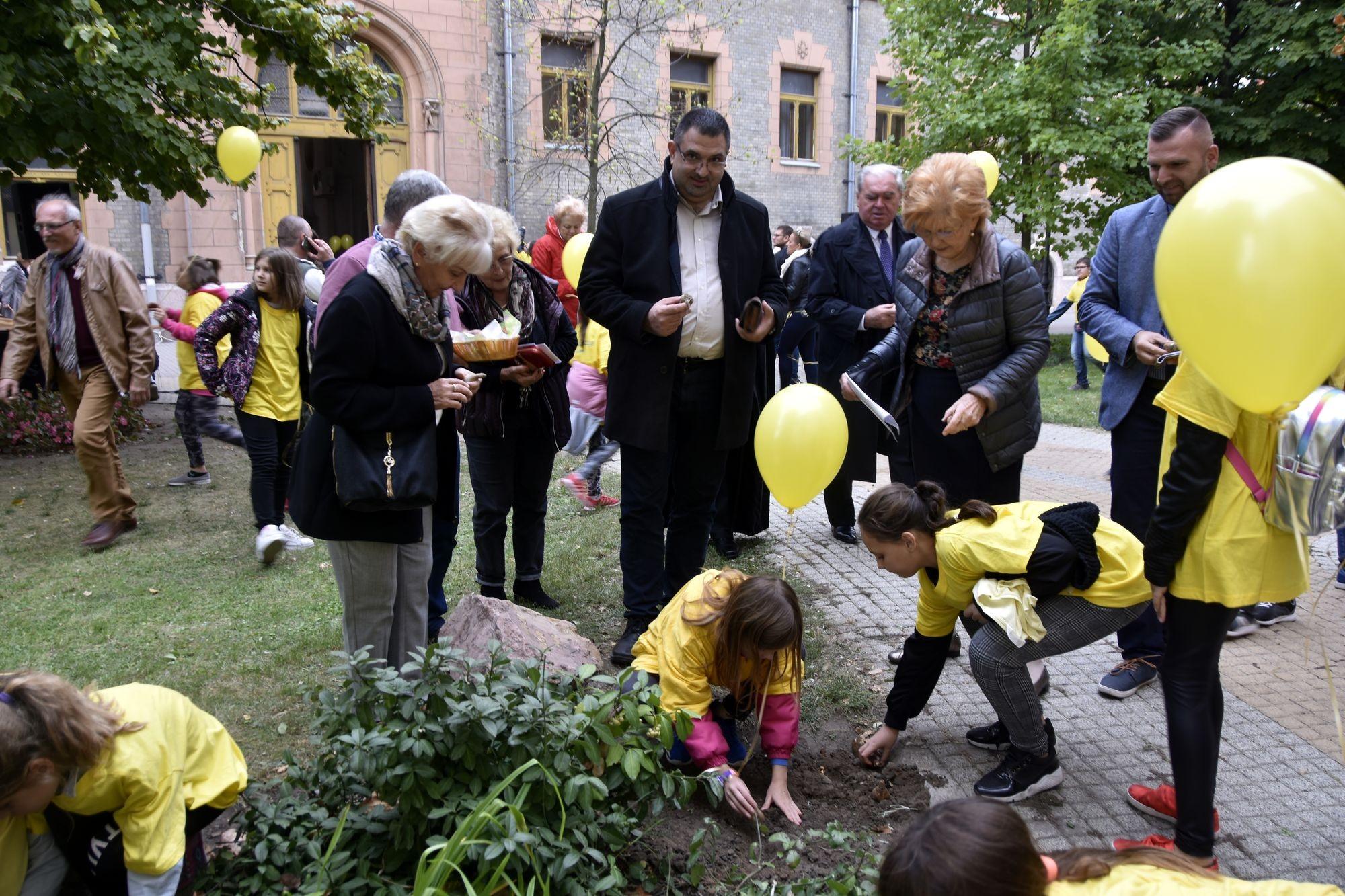 Immár 9. alkalommal ültet nárciszt az Ölelő Kéz Ápolási és Hospice Alapítvány