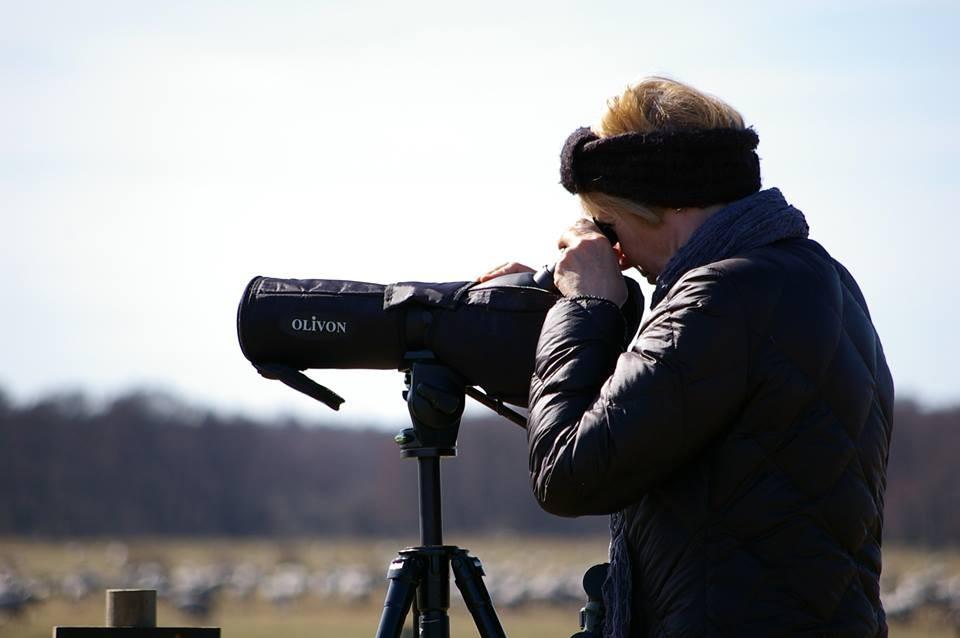 Bács megyében 6 helyszínen csatlakozhatunk a madármegfigyelőkhöz