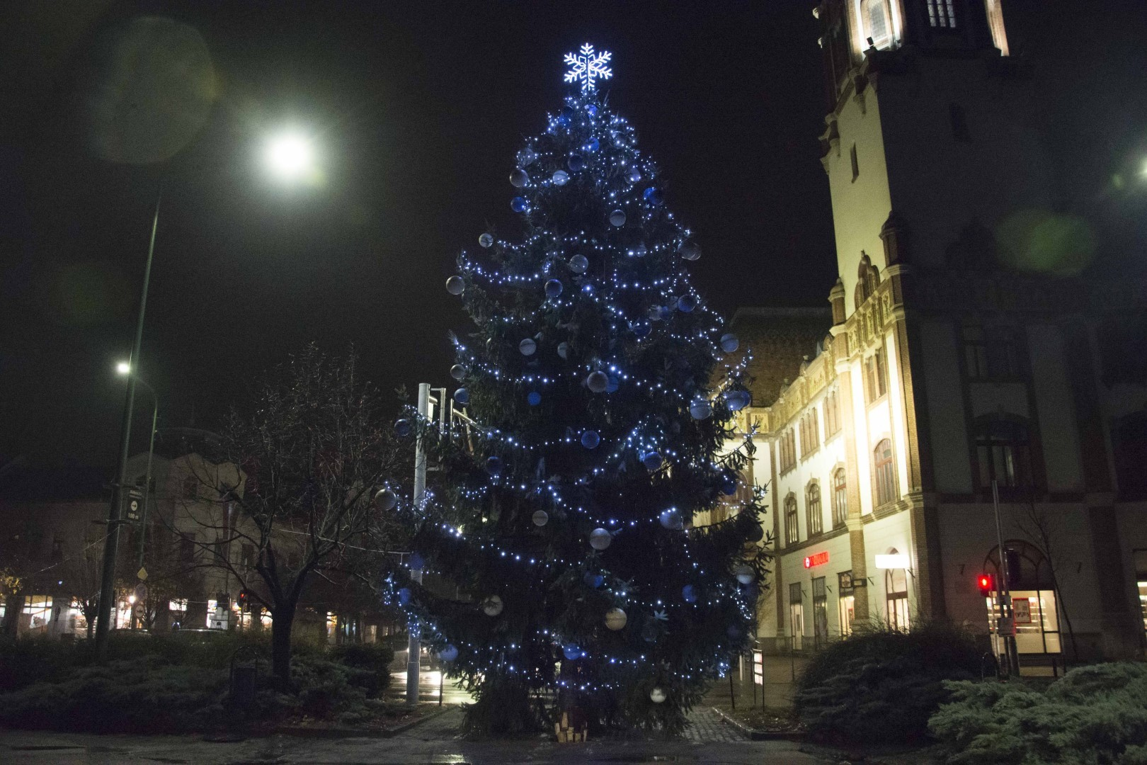 Szép karácsonyfa és díszkivilágítás gyönyörködteti a félegyháziakat