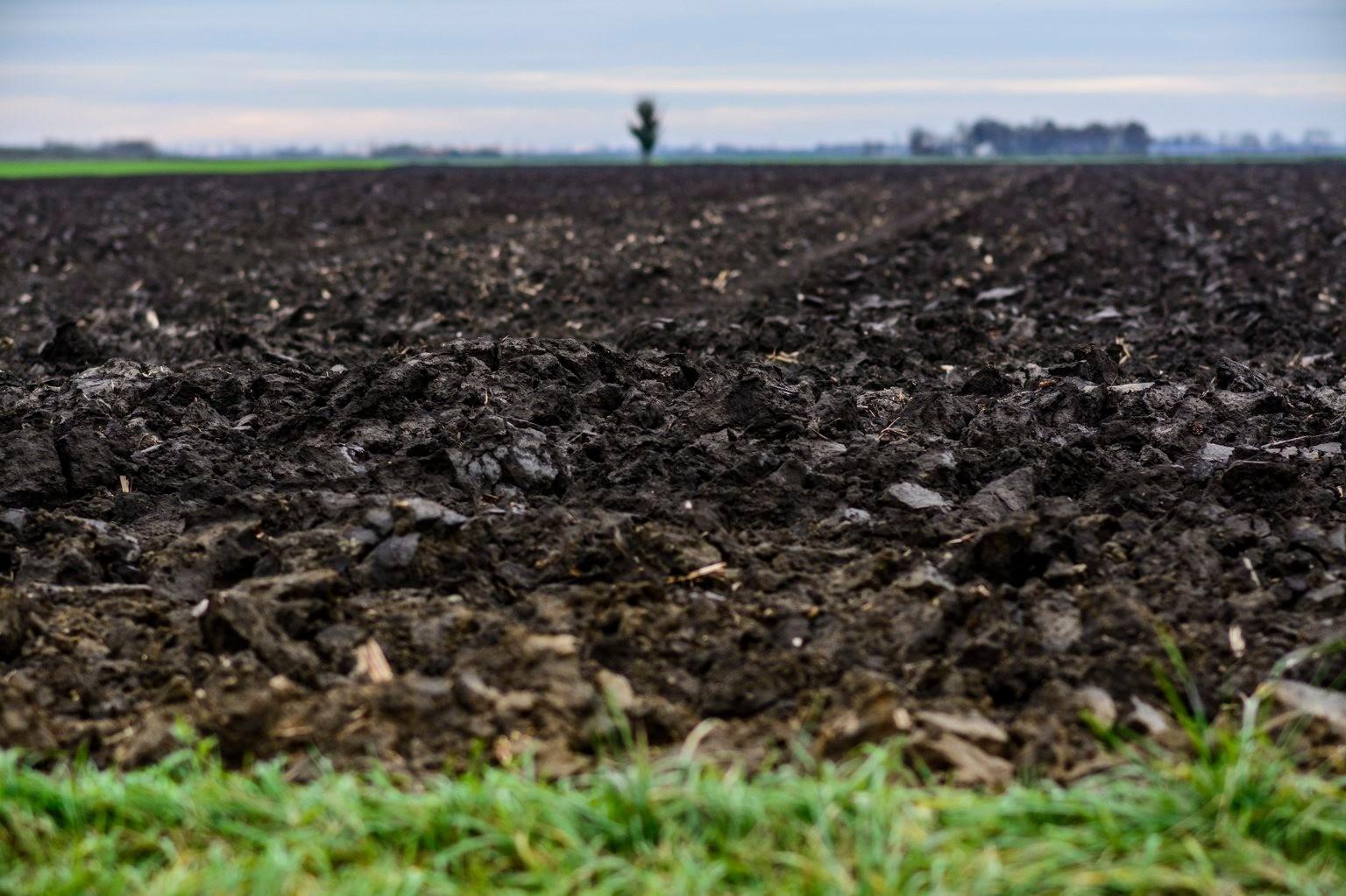 A legtöbb termőföldet Bács-Kiskun megyében értékesítették