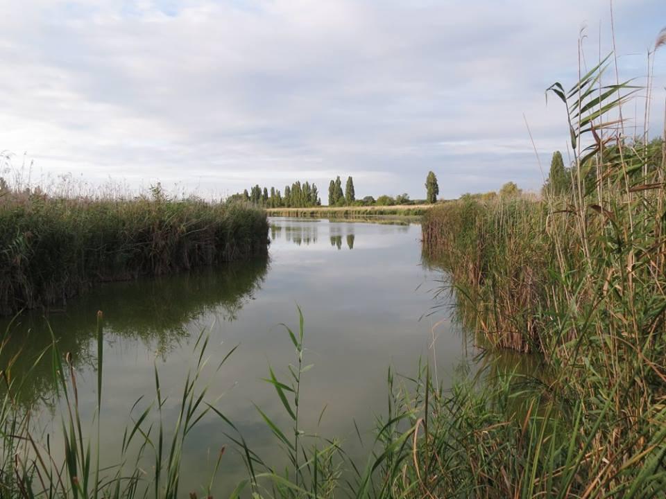 Október végére helyre áll a Dávodi Földvári-tó és a karapancsai erdei tavak vízellátása