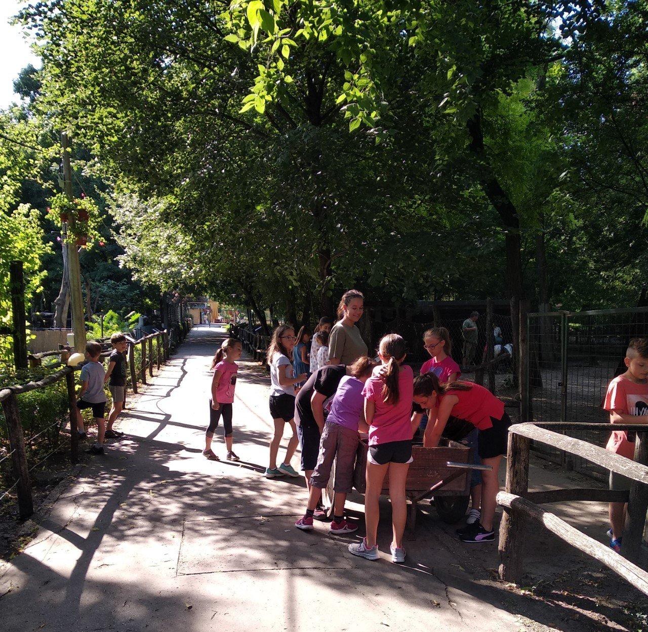 Vakációzó gyerekekkel telt meg a Kecskeméti Vadaskert