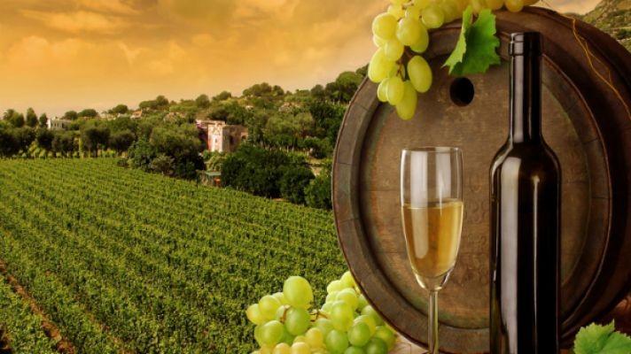 Villányi borokat is elárvereznek a Kantharosz gálán