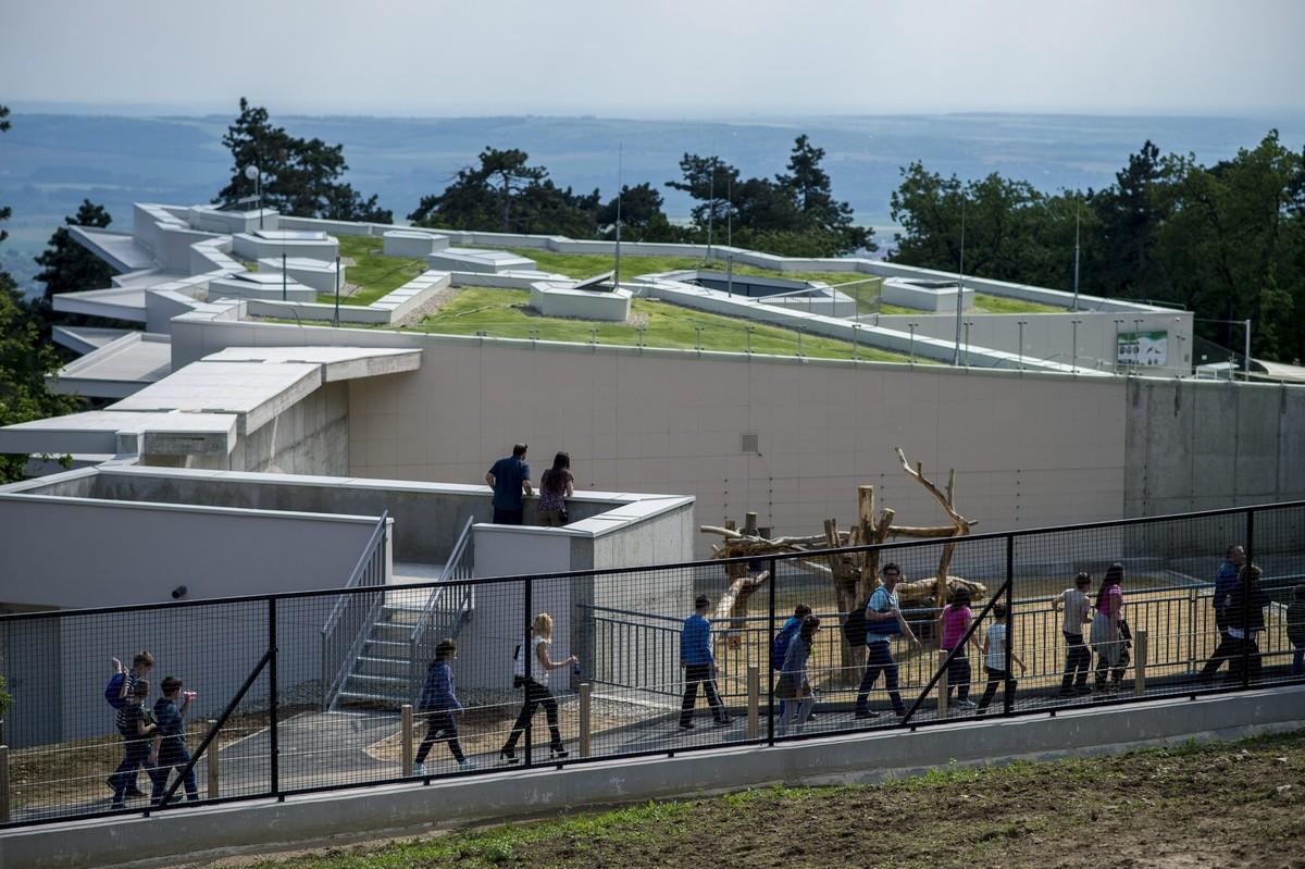A 250 ezredik látogatóját köszöntötte a pécsi állatkert