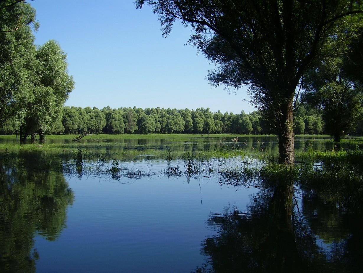 Ötven férőhelyes turistaszállás épül az Ős-Dráva Látogatóközpont szomszédságában