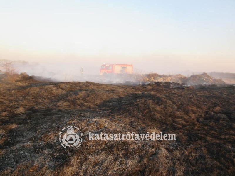 Ismét a szabadtéri tüzek adtak munkát a baranyai tűzoltóknak