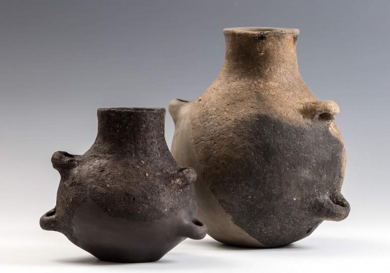 Először állítják ki az M6-os építése során előkerült 7000 éves leleteket