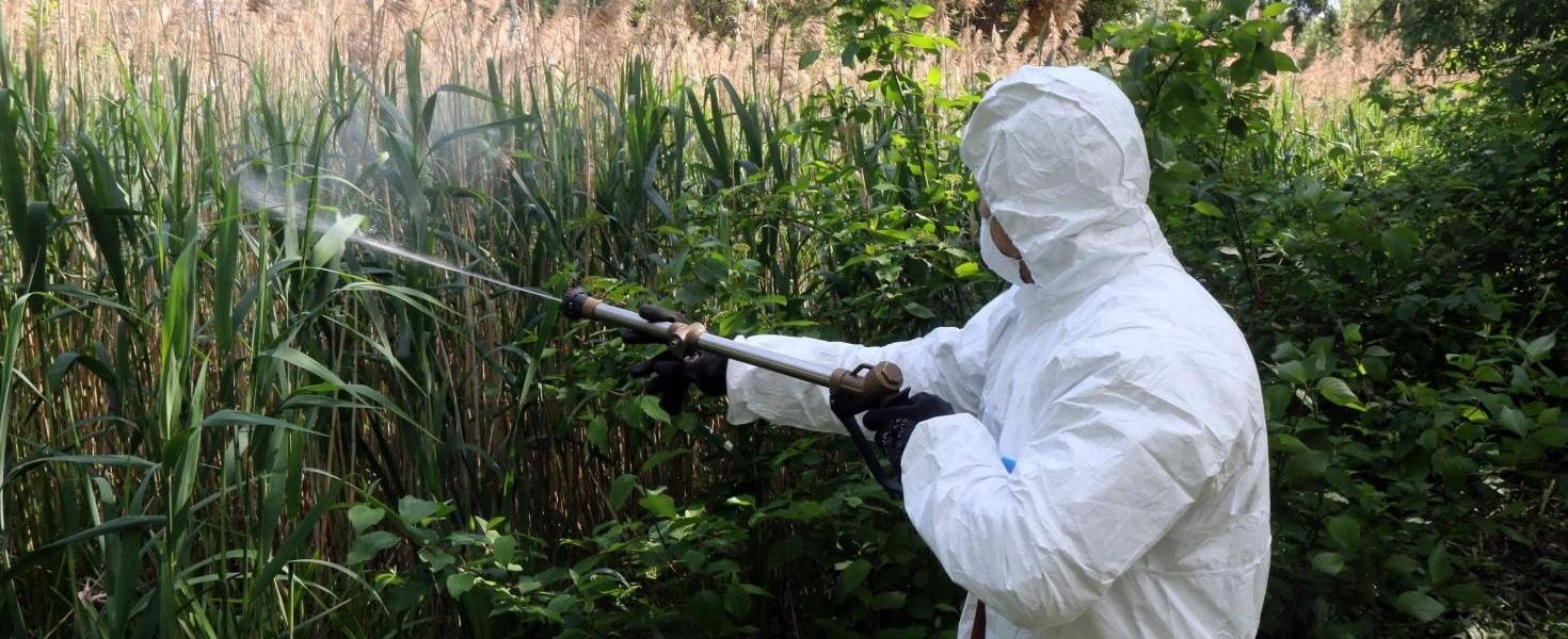 A következő napokban 43 Baranya megyei településen lesz szúnyogirtás