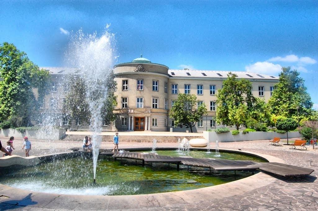 Megállapodást kötött az MVM és a Dunaújvárosi Egyetem