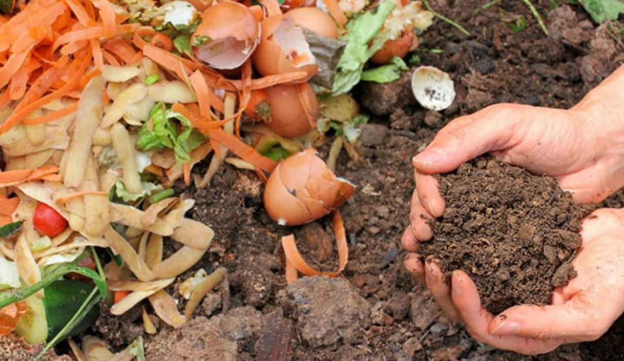 Az ipari és mezőgazdasági szerves hulladék is lehet hasznos anyag