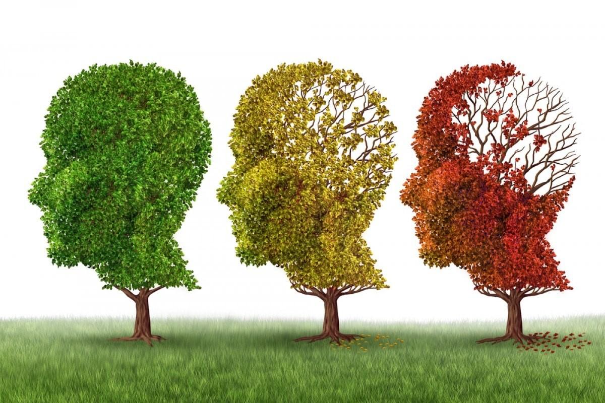 Előadás a demenciáról - folytatódik az Alzheimer Café programsorozata Fehérváron