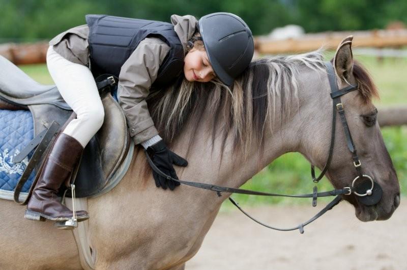 Jótékonysági lovasnapot szerveznek a hátrányos helyzetű gyerekeknek Fehérváron