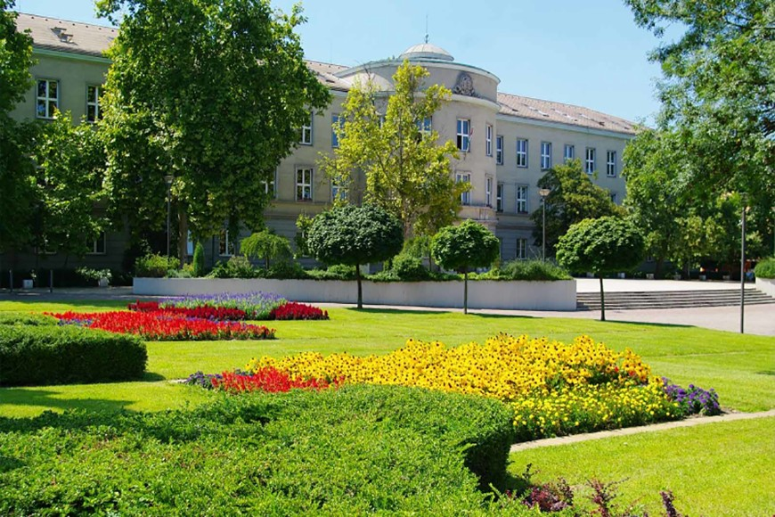 Közös klímastratégia pályázaton indul a Dunaújvárosi Egyetem és a Dunaújváros Megyei Jogú Város Önkormányzata