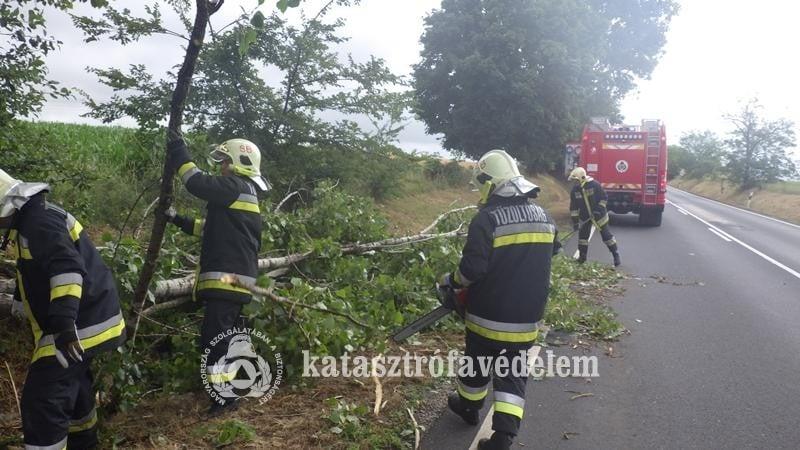 Vihar - OKF: kidőlt fák, elárasztott pincék adnak munkát a tűzoltóknak országszerte