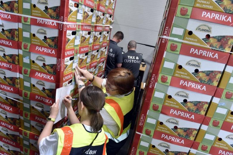 Fejér megyei zöldség- és gyümölcsárusoknál tart ellenőrzést a Nav