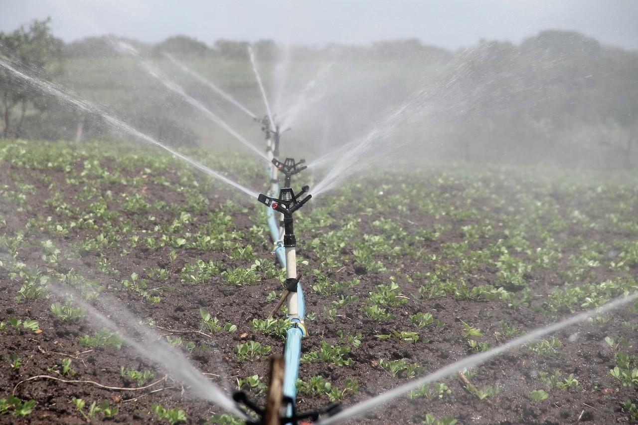 A rendkívüli öntözési célú vízhasználat szabályai