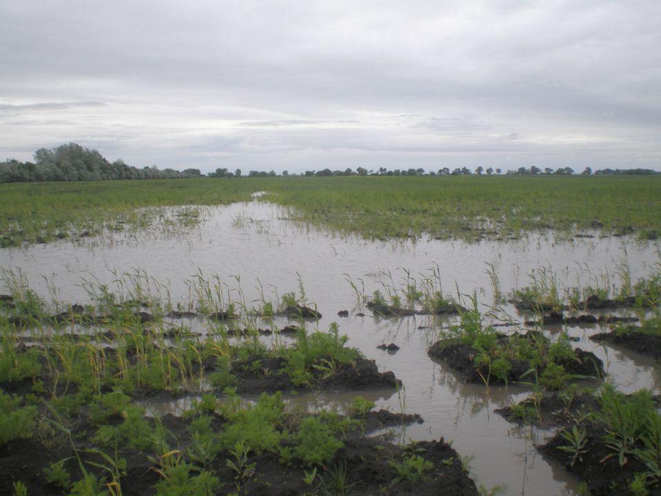 Megszűnt a belvízvédelmi készültség a Közép-Tisza vidékén