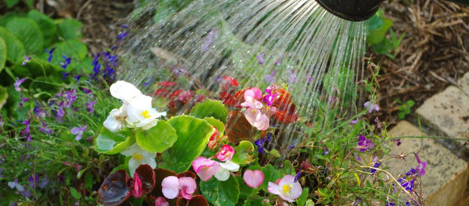 Hiányos és pontatlan a vízközmű- és a fogyasztóvédelmi törvény
