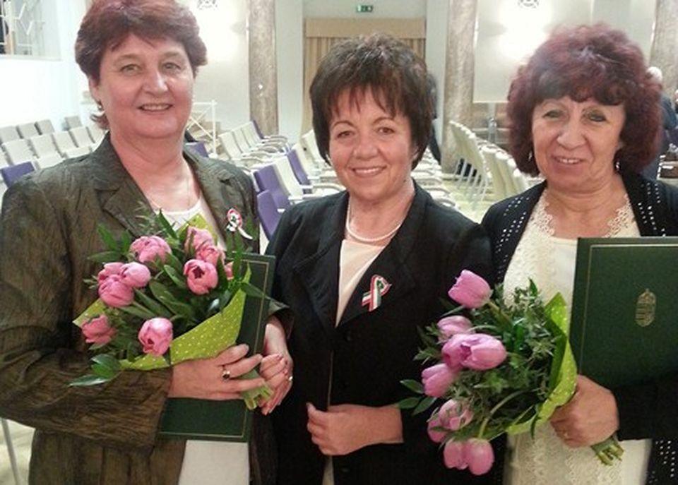 Elismerések nemzeti ünnepünk alkalmából a megyében