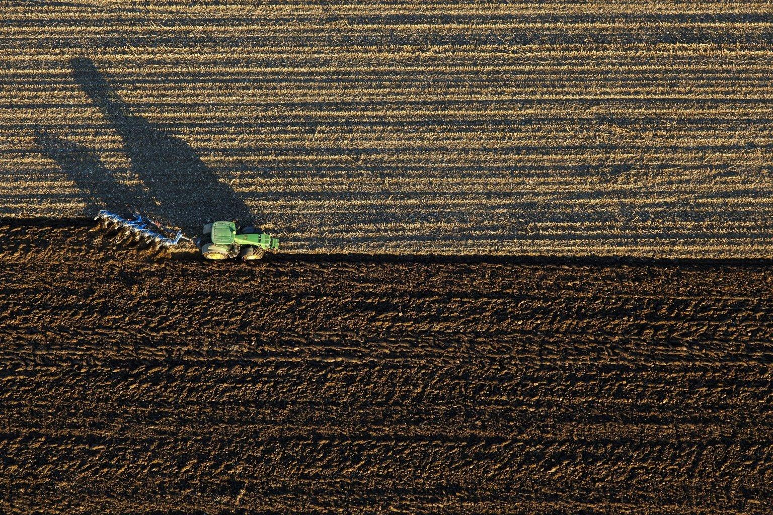 A gazdák aggódnak a túlságosan enyhe időjárás miatt