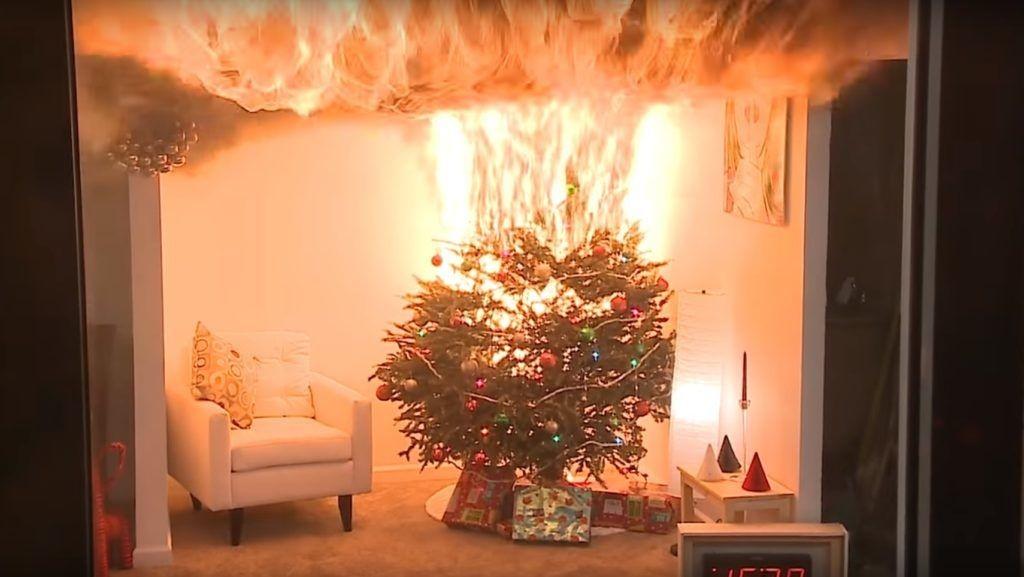 Veszélyessé válhatnak a kiszáradt karácsonyfák!