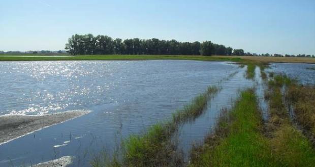 Továbbra is árvízvédelmi készültség a Közép-Tisza vidékén