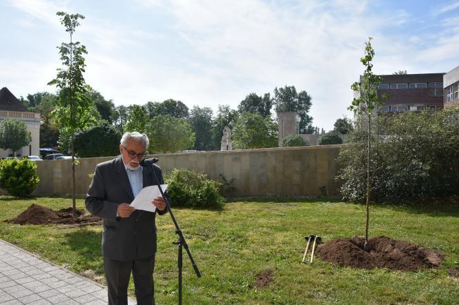Hetvenéves a független Izrael Állam