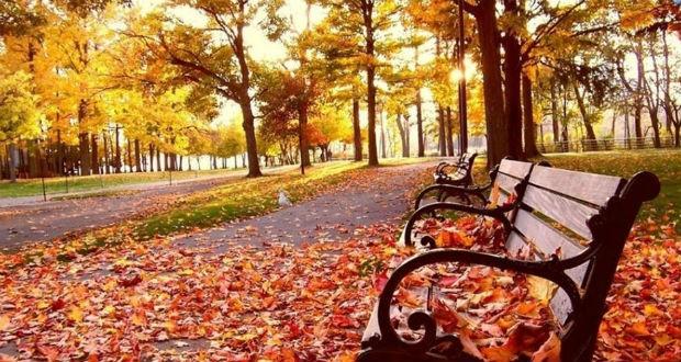 Csaknem rekord meleg volt az ősz