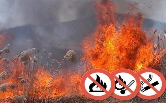 Tűzgyújtási tilalmat rendeltek el Bács-Kiskun megyében