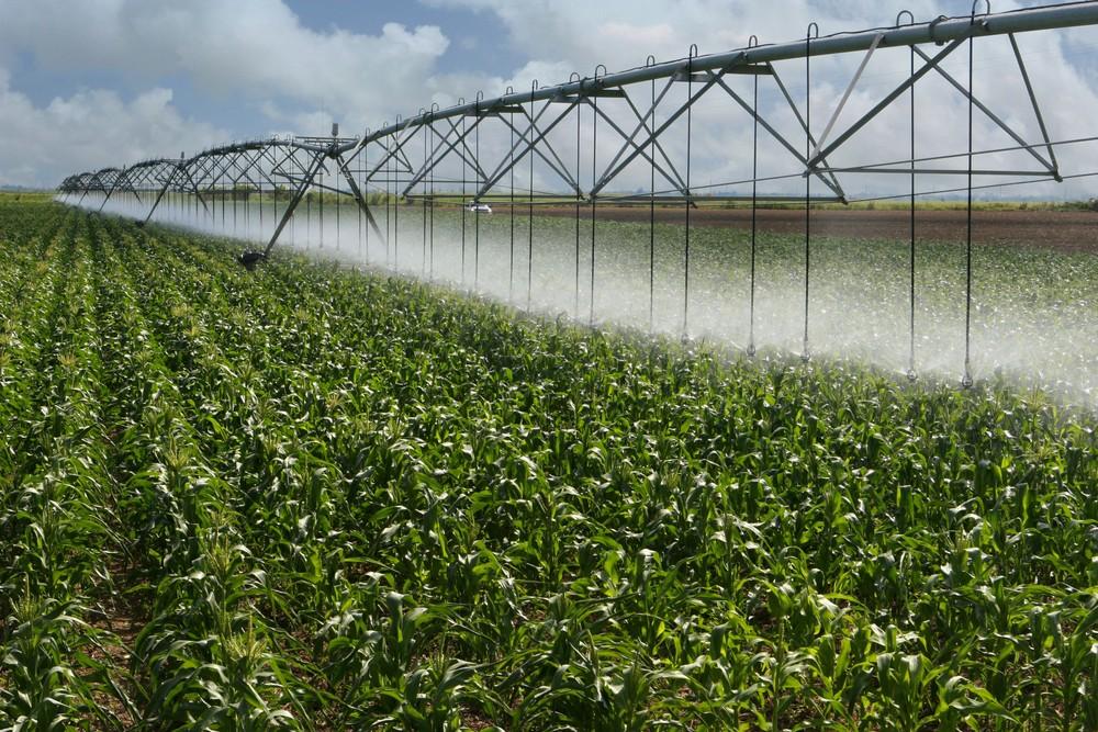 Az EP ösztönzi a víz újrahasznosítását a mezőgazdaságban