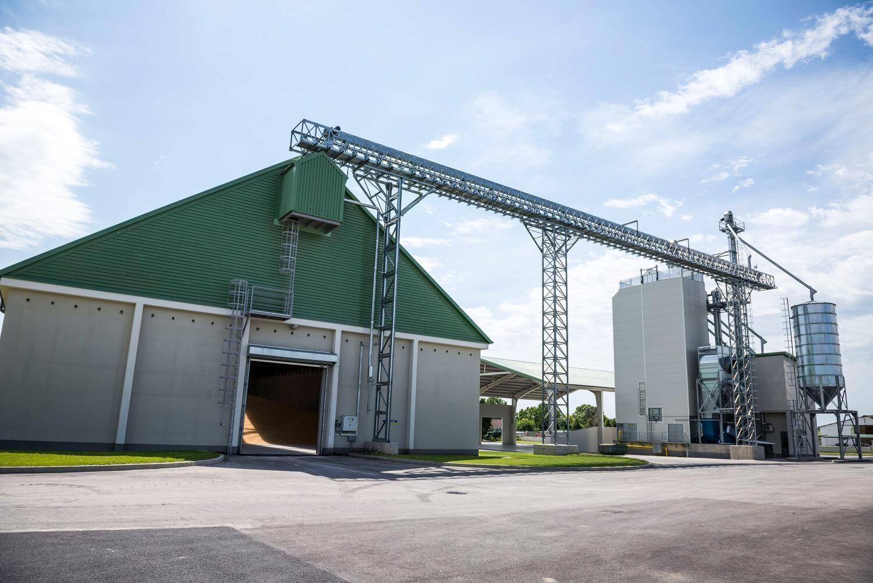 Lendületben a magyar tésztagyártó