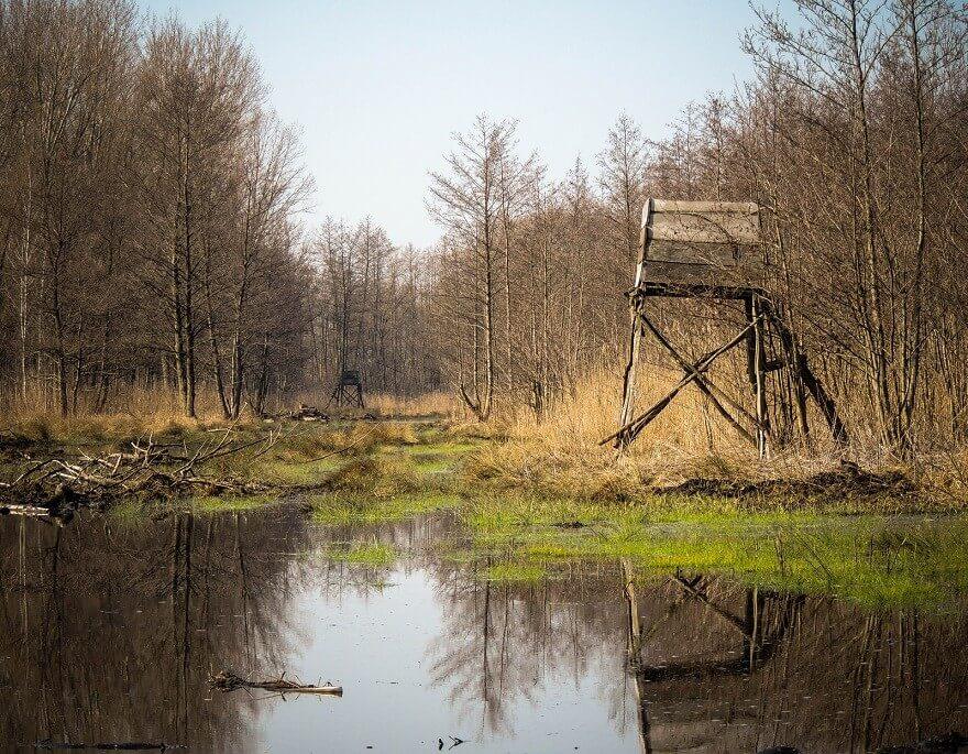 Augusztusban indul a Dunántúl legjelentősebb természetvédelmi projektje
