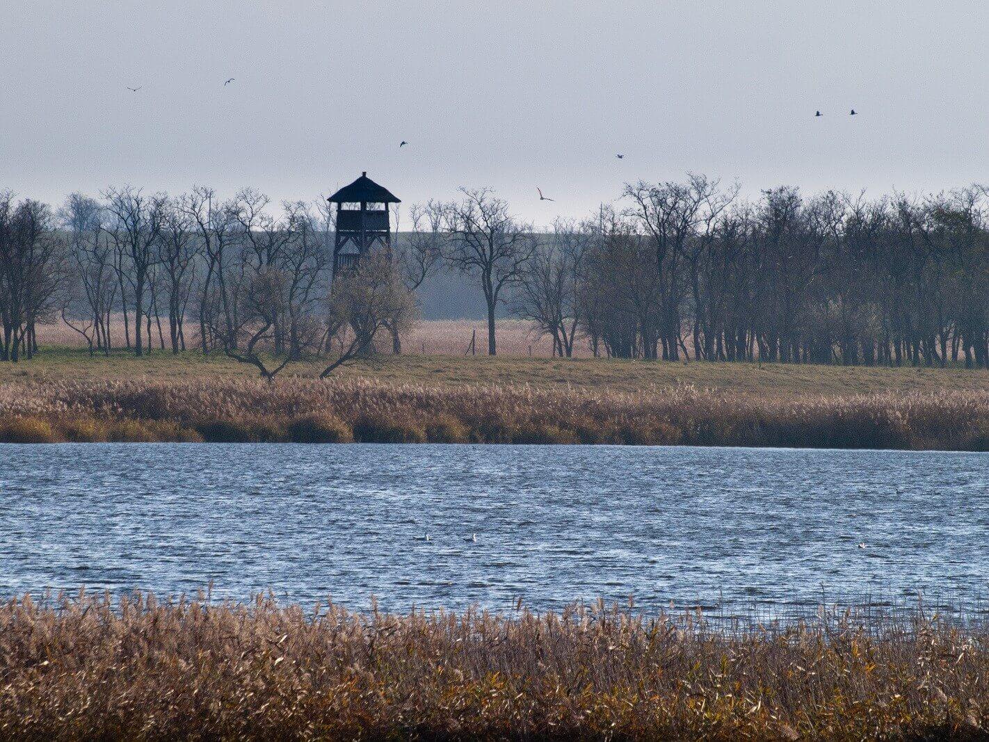 A Duna-Ipoly Nemzeti Park számos vizes élőhelye újul meg