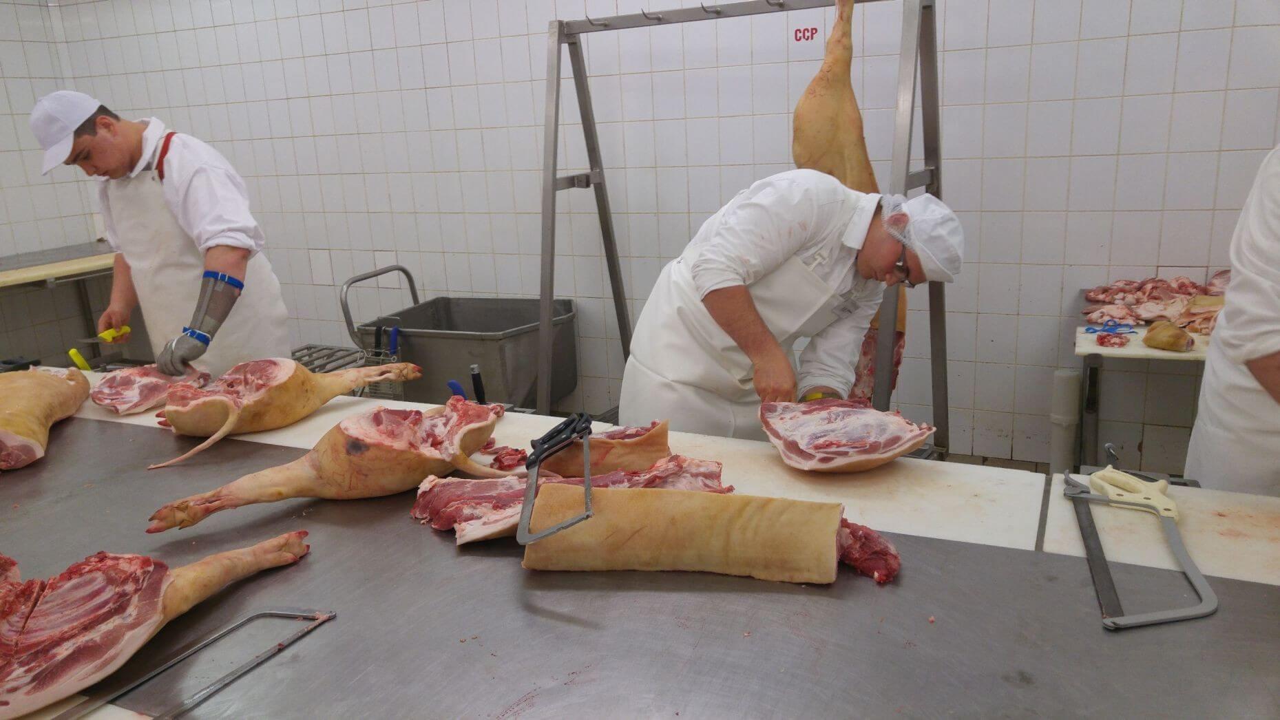 Új húsfeldolgozó üzem nyílik Abaújszántón