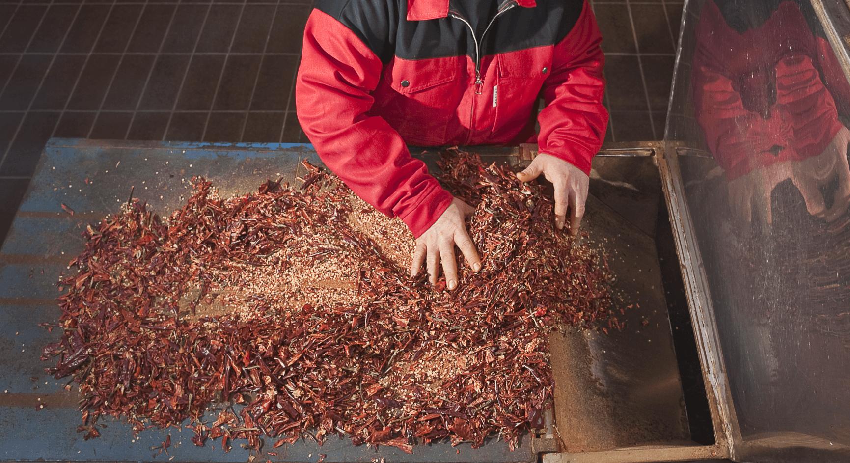 Saját őrlőüzemmel oldotta meg a fűszerpaprika-termelését Tiszaszentimre