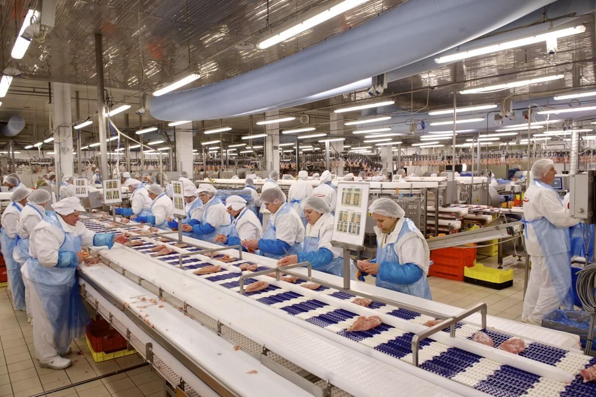 Háromszázötven munkahelyet hoz Bács megyébe egy élelmiszeripari nagyberuházás