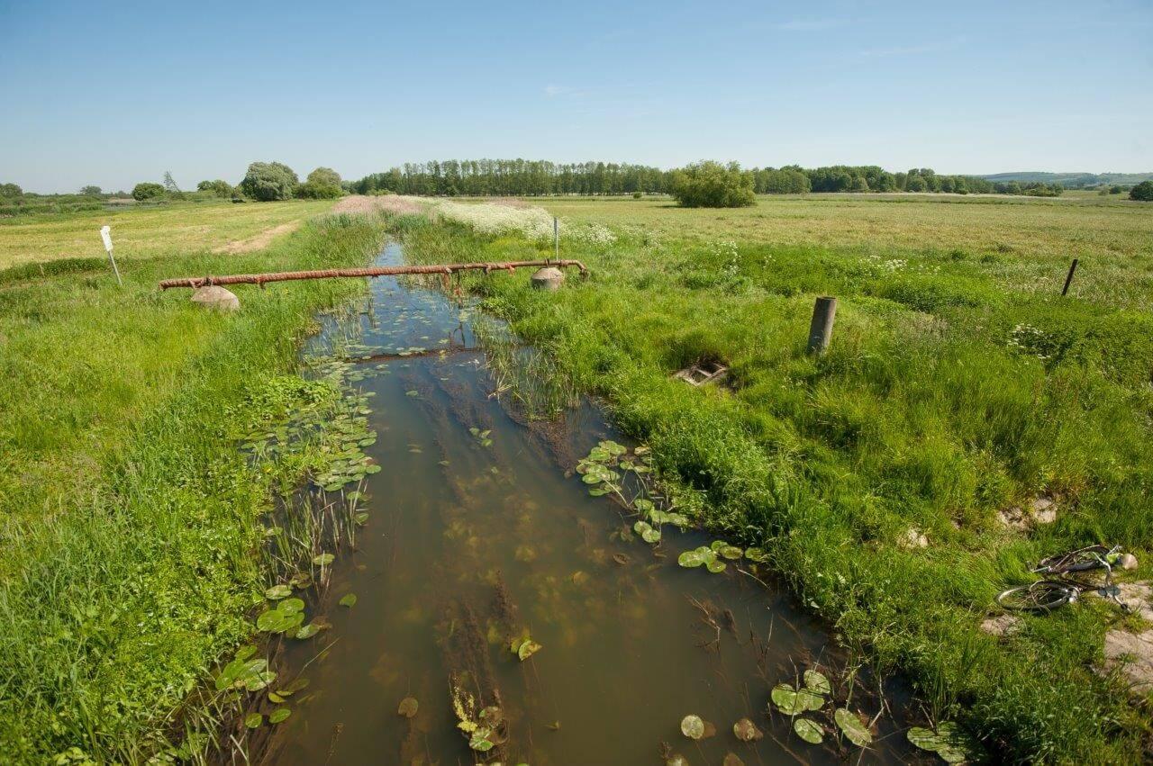 A Szabadics megszünteti a Kis-Balaton vízvédelmének gyenge pontját