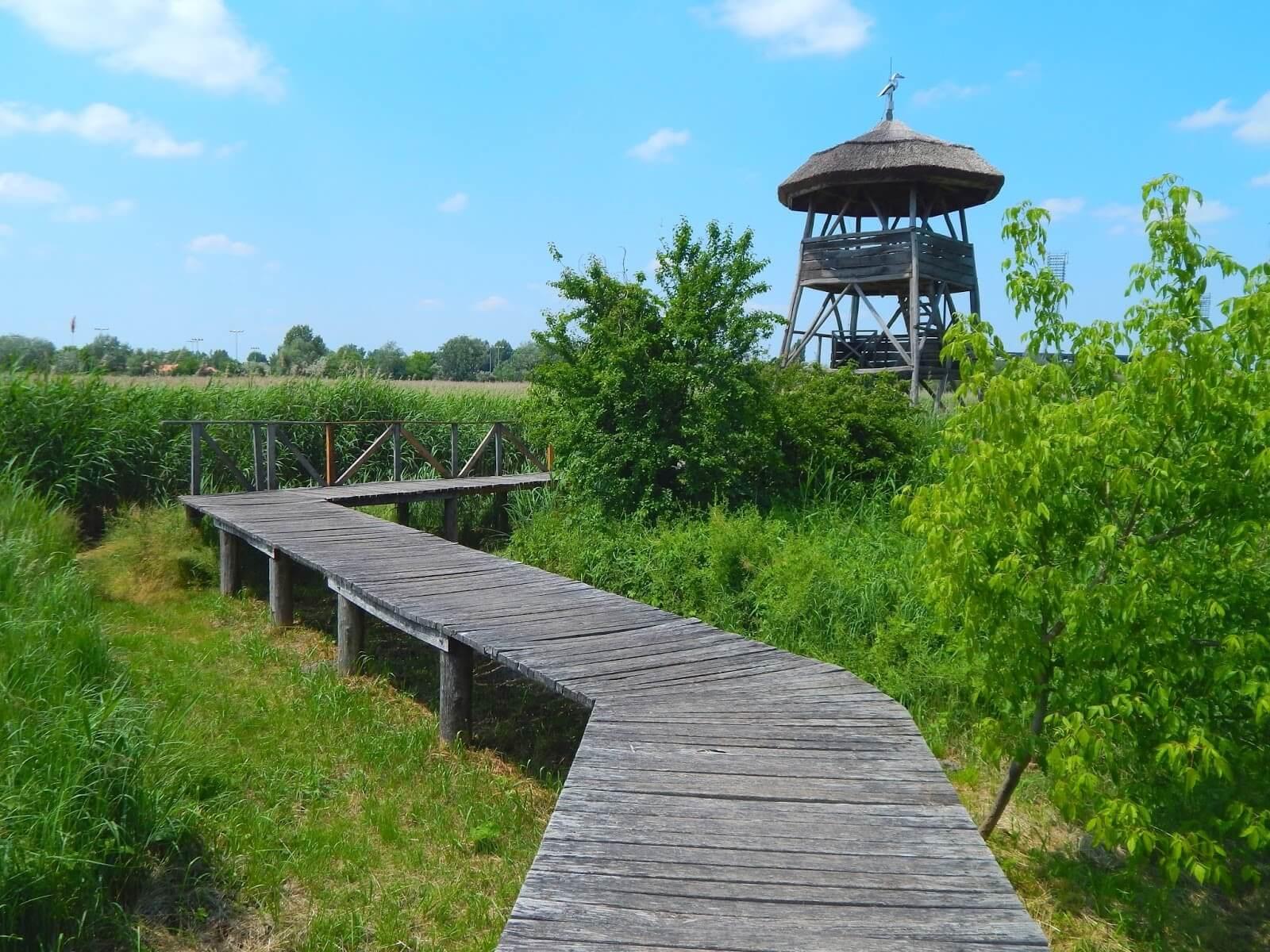 Indulhat Székesfehérvár több mint félmilliárdos természetvédelmi projektje