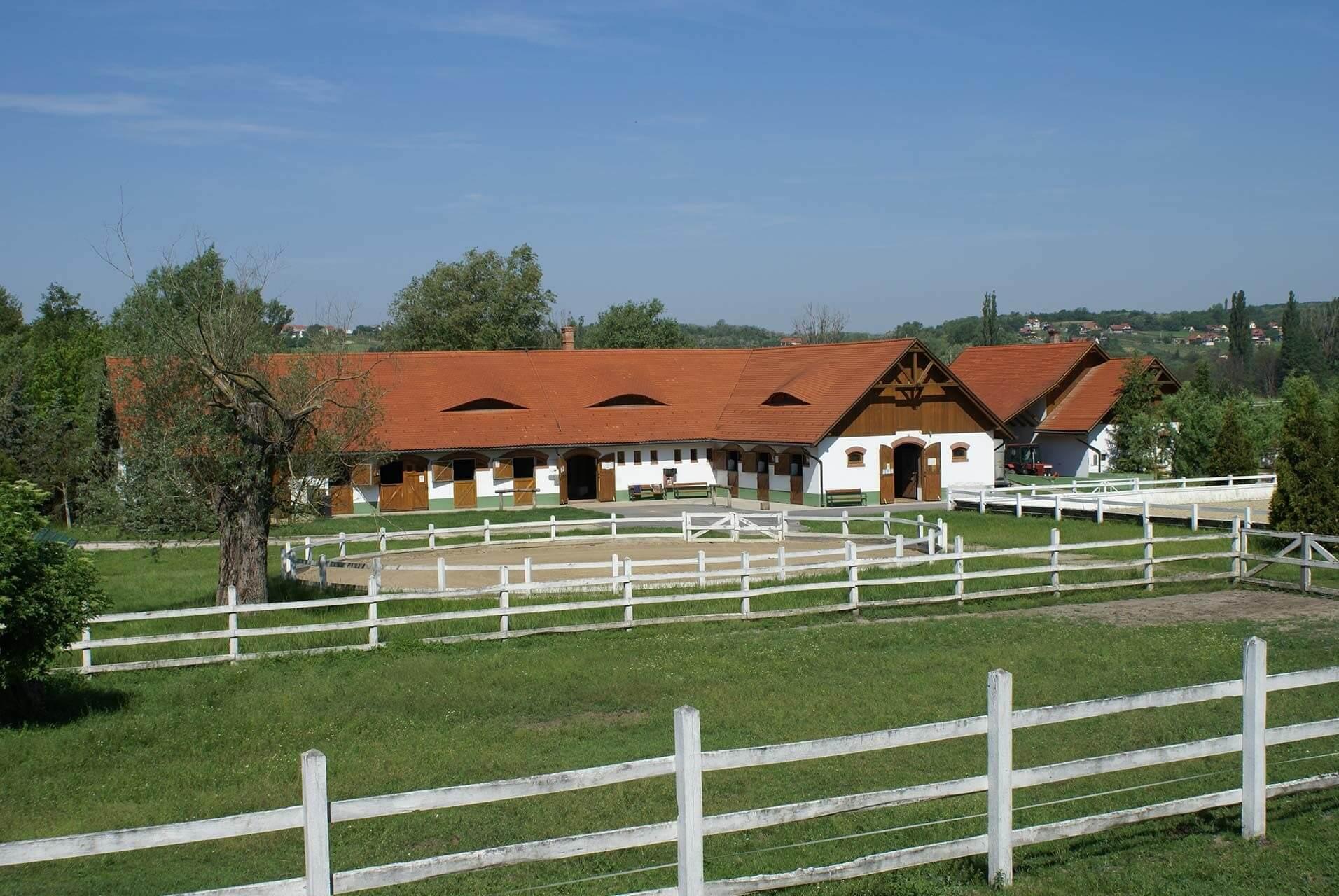 Tájpark, lovarda és borkatedrális épül Lakitelken